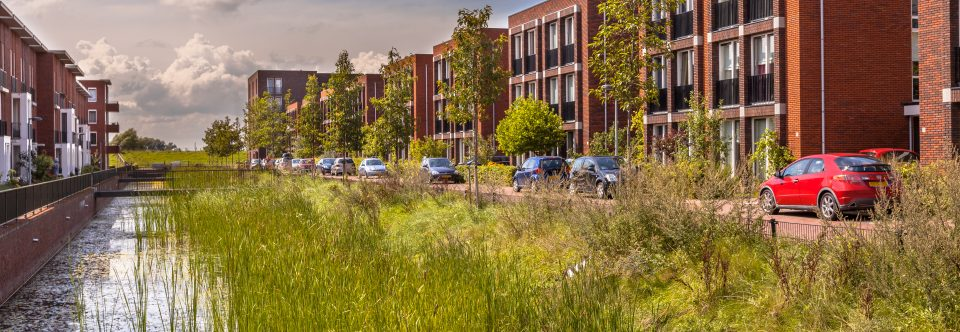 ICS-TNC Pursue Green Infrastructure Partnership